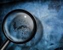 Адвокат осуществляет защиту клиента по уголовным делам на стадии предварительного следствия